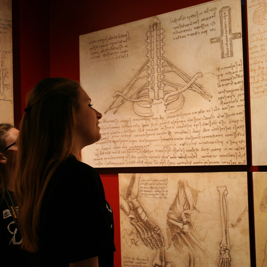 Leonardo was fascinated by the mechanics of the human body. His detailed anatomical drawings inspired the style in Gray's Anatomy, the most well-known anatomy textbook in the world