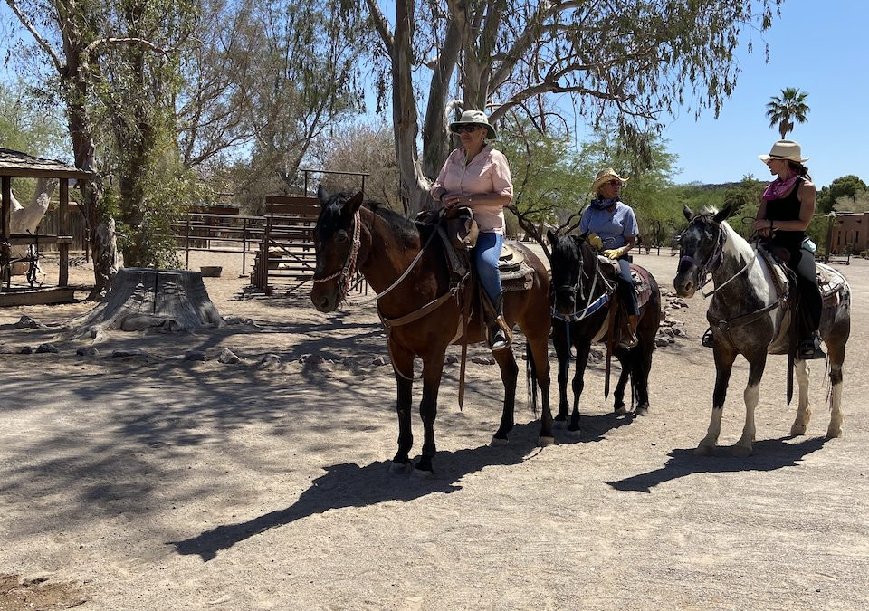 The White Stallion Ranch experience