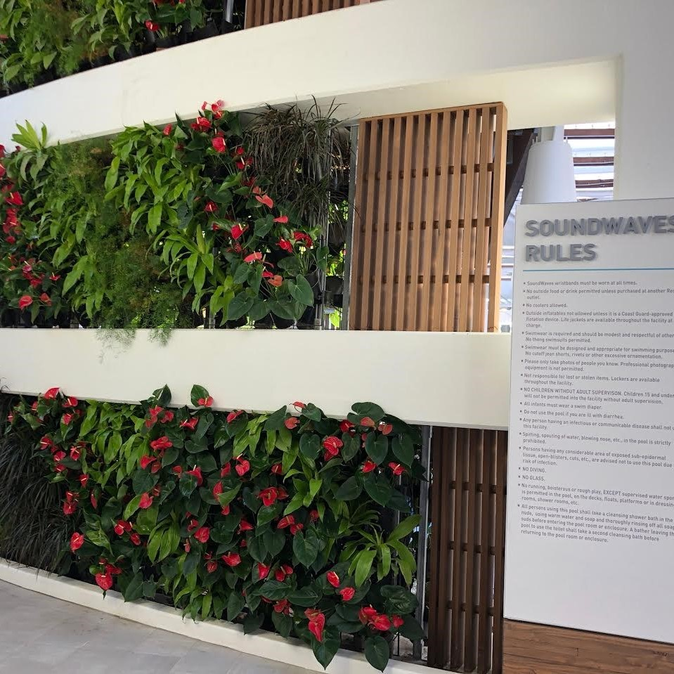 Plotted plants and greenery gives Soundwaves a warm and inviting feel