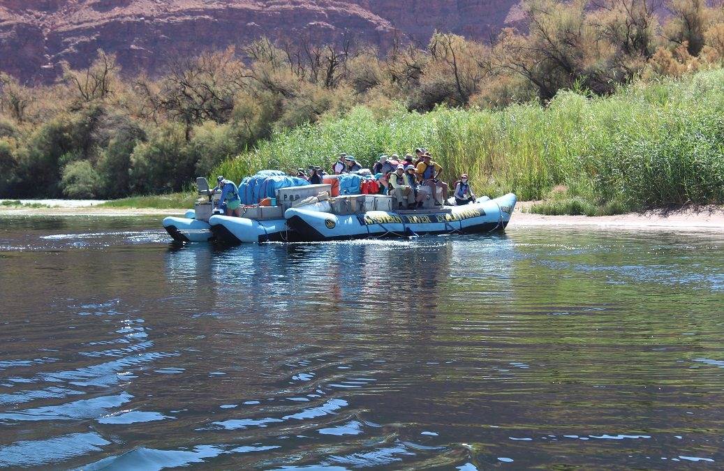 Rafting the Grand Canyon with Western River Expeditions