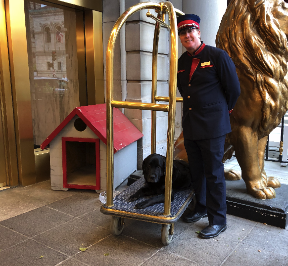 Carly Copley at the Fairmont Copley Plaza in Boston with Doorman Mike Eads, who adopted her