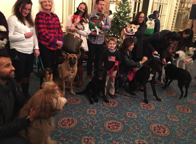 Carly with her four and two-legged friends at her birthday party last December