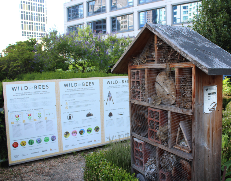 A townhouse for solitary bees at the Fairmont Waterfront Vancouver
