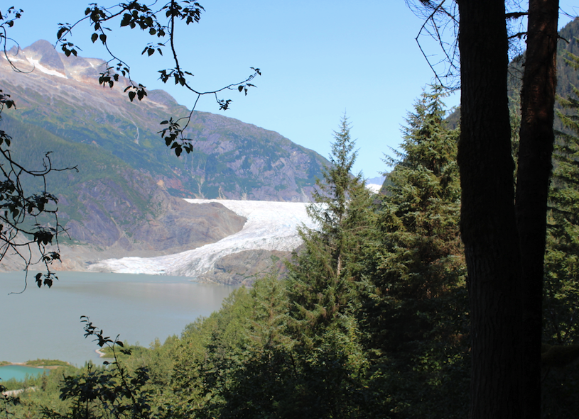 View of the Mendenhall Glacier from the East hiking trail