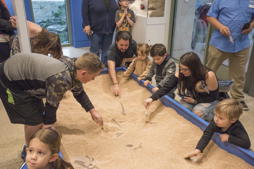 The Dinosaur Lab, Witte Museum