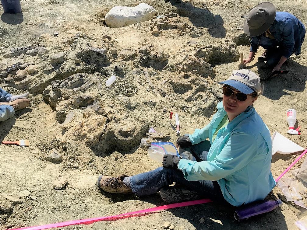 Volunteers at work on the Jurassic Mile