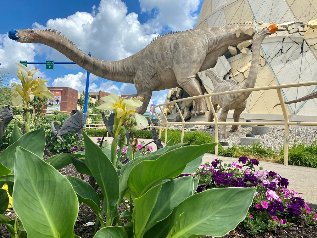 Masked dinosaurs on display in Indianapolis. (The Children's Museum of Indianapolis)