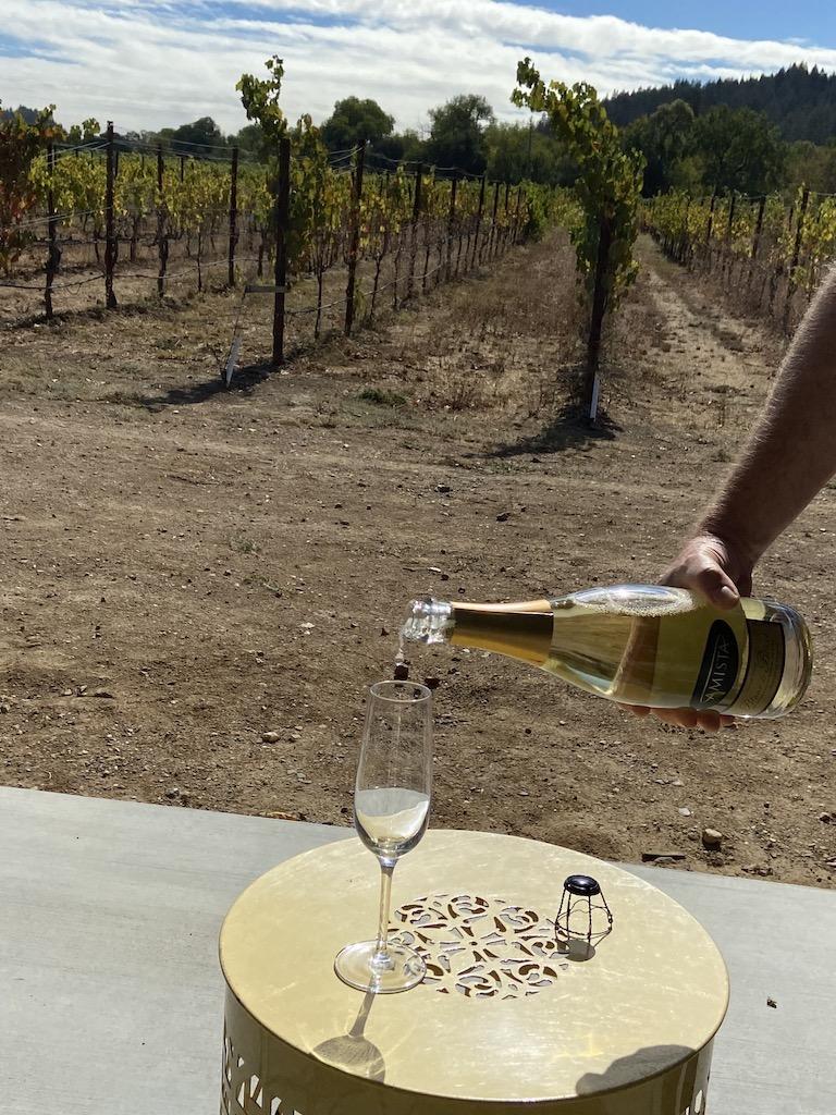 Pouring a tasting at Amista Vineyards near Healdsburg